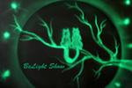 BELIGHT SHOW